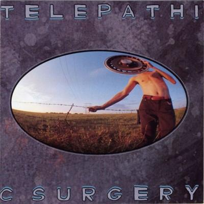 Flaming Lips - Telepathic Surgery (LP)