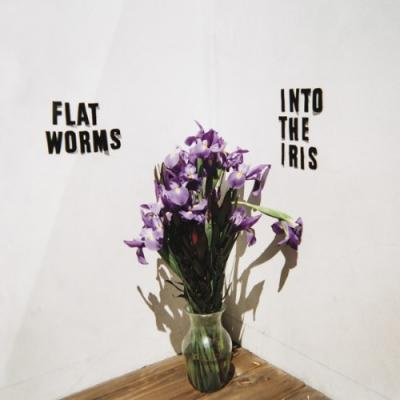 """Flat Worms - Into the Iris (12"""")"""