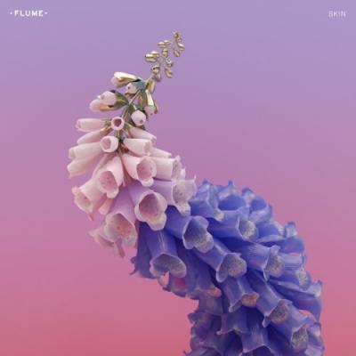 Flume - Skin (2LP)