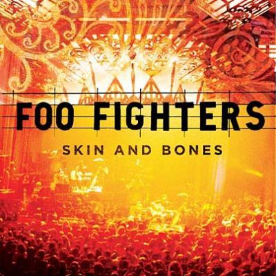 Foo Fighters - Skin & Bones (cover)