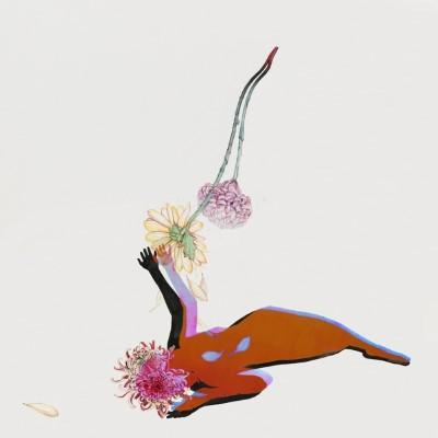 Future Islands - Far Field (LP)