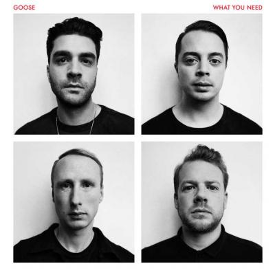 GOOSE - What You Need (LP)