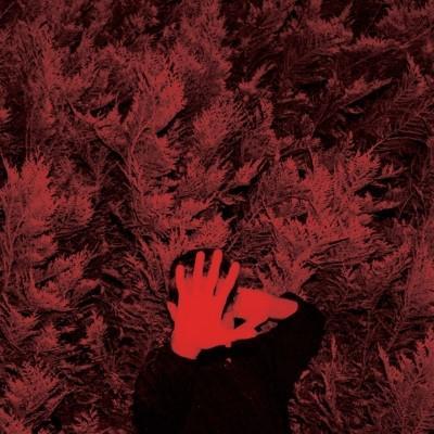Hanson, Cory - Unborn Capitalist From Limbo (LP)