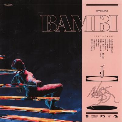 Hippo Campus - Bambi (LP)