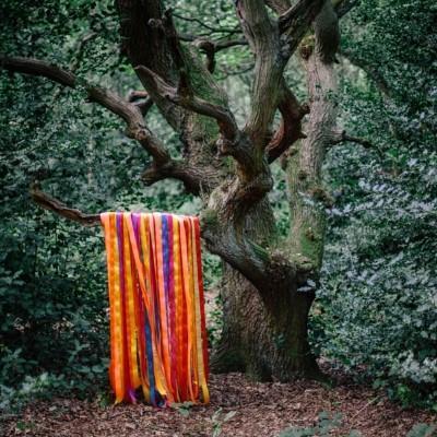 Holden, James & the Animal Spirits - Animal Spirits
