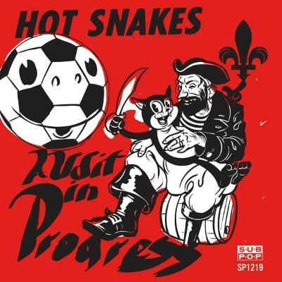 Hot Snakes - Audit In Progress
