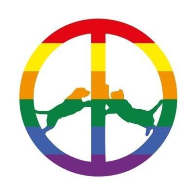 Hype Williams - Rainbow Edition (LP)