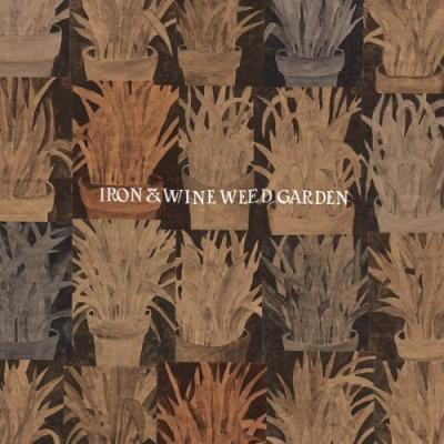 Iron & Wine - Weed Garden (Orange Vinyl) (LP)