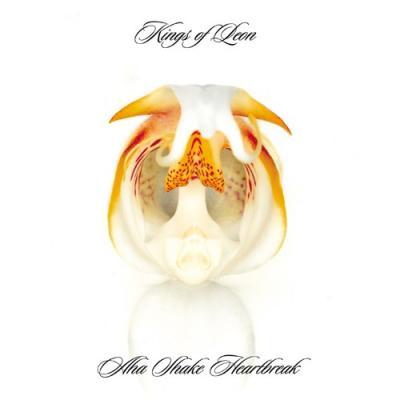 Kings Of Leon - Aha Shake Heartbreak (LP) (cover)