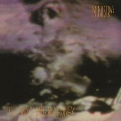 Ministry - Land Of Rape And Honey (LP) (cover)