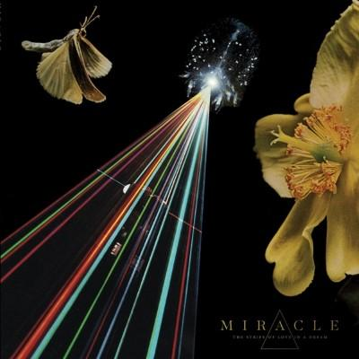 Miracle - Strife of Love In a Dream (LP)