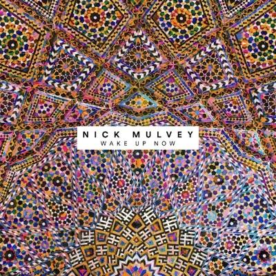 Mulvey, Nick - Wake Up Now (LP+Download)