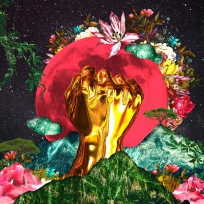 Mushonga, Rina - In a Galaxy (LP)
