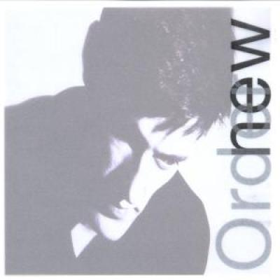 New Order - Lowlife (cover)