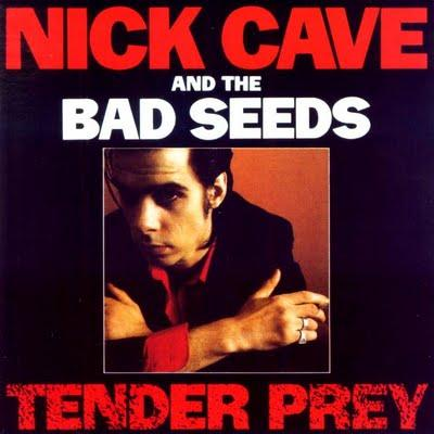 Cave, Nick & Bad Seeds - Tender Prey (CD+DVD) (cover)