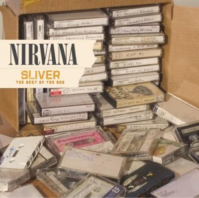 Nirvana - Sliver (cover)