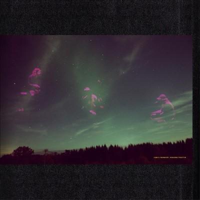 Norgren, Daniel - Skogens Frukter (LP)