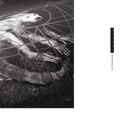 Pixies - Doolittle 25 (LP+Download)