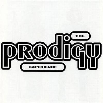 Prodigy - Experience (cover)