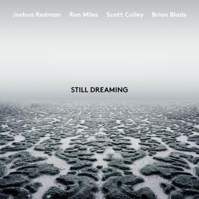 Redman, Joshua - Still Dreaming (LP)