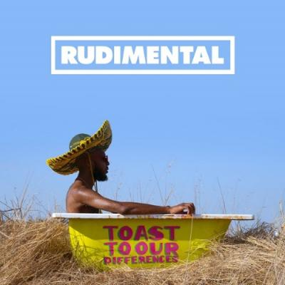 Rudimental - Toast Our Differences (2LP)