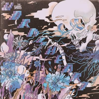 Shins - Worms Heart (LP)