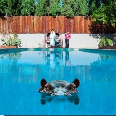 Sparks - Hippopotamus (2LP+Download)