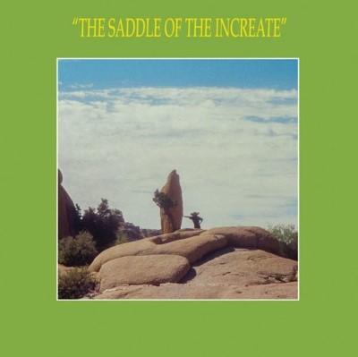 Sun Araw - Saddle of the Increate (2LP)