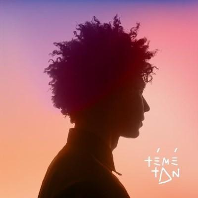 Témé Tan - Témé Tan (LP+Download)