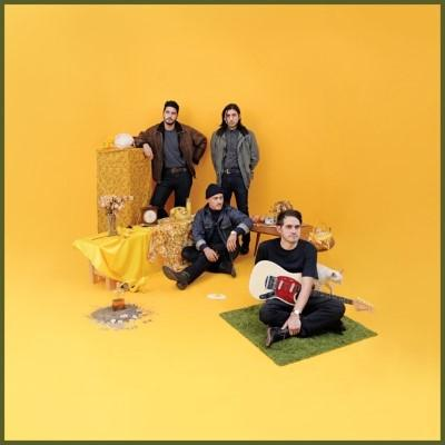 Together Pangea - Bulls and Roosters (Coloured Vinyl) (LP)