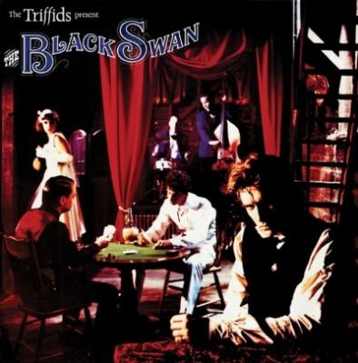 Triffids - Black Swan (2CD)