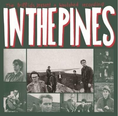 Triffids - In the Pines