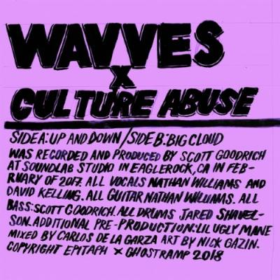 """Wavves & Culture Abuse - Up And Down (7"""")"""