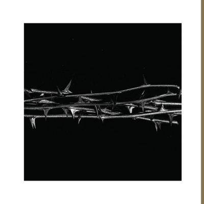 AMENRA - De Doorn (2LP) (Bone White Vinyl)