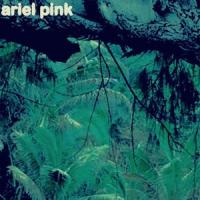 Ariel Pink - Odditties Sodomies Vol.3 (LP)