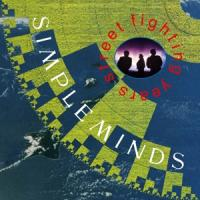 Simple Minds - Street Fighting Years (4CD)