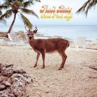 Fruit Bats - Gold Past Life (LP)