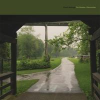 Cloud Nothings - The Shadow I Remember (LP)