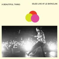 Idles - A Beautiful Thing Idles (Live) (2CD)