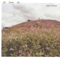 Sprague, Emily A. - Hill, Flower, Fog (LP)