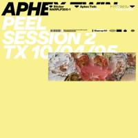 Aphex Twin - Peel Session 2 (12INCH)