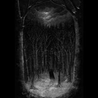 Paysage D'Hiver - Im Wald (2CD)