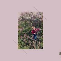 Dale, Eyolf - Being (LP)