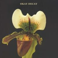 Canshaker Pi - Okay Decay