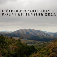 Dirty Projectors & Bjork - Mount Wittenberg Orca (LP) (cover)