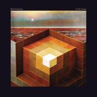 Black Mountain - In The Future (cover)