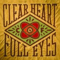 Craig Finn - Clear Heart Full Eyes (cover)
