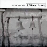 Dead Can Dance - Toward The Within (cover)