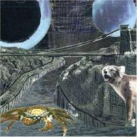 Deerhoof - Green Cosmos (LP) (cover)