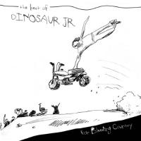 Dinosaur Jr. - Ear Bleeding Country (Best of) (Deluxe) (2LP)